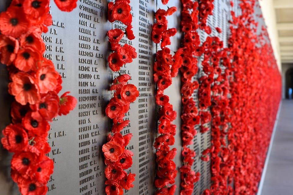 Remembrance Day and Red Poppies for Fallen Soldiers