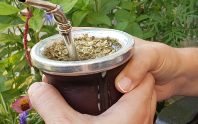 """El mate"": a special bond created by yerba mate"